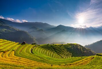Sunset over Terraced rice field with lens flares, Mu Cang Chai, Yen Bai, Vietnam