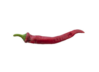 Closeup shot of a hot chili pepper isolated on a white background