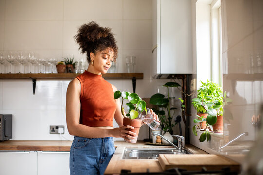 African american female watering a house plant in kitchen