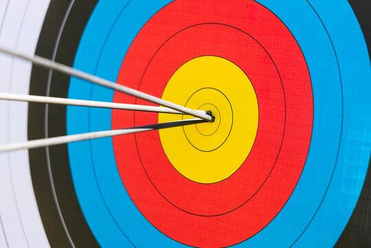 Arrows in bull's eye