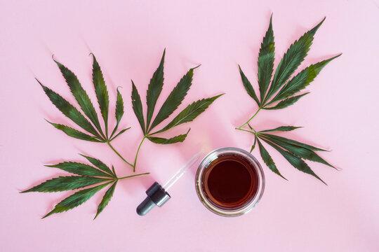 Tudio shot of cannabis leaves and homemade CBD oilS