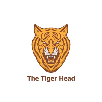 tiger head illustration for logo, symbol and yellow tiger