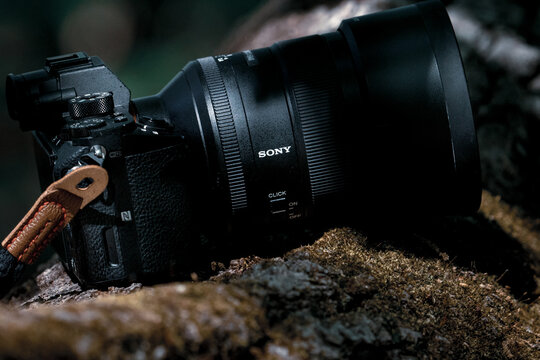 Wildlife documentary filmmaker crews Sony Alpha mirrorless camera body with attached 85mm G Master autofocus lens and leather strap resting on a mossy log in the forest