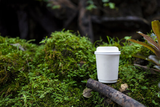 white paper cup of coffee in the beautiful nature with soft focus and over light in the background. mockup and templates to create greeting, cards, magazines, cover, poster and banners.