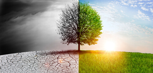 Fototapeta Natur im Wandel obraz