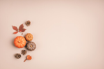 Fototapeta Collection of handmade plaster pumpkins. Autumn seasonal holidays background in natural colors. DIY craft pumpkins for helloween, thanksgiving, fall decoration obraz