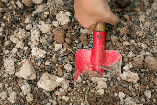 Selective focus of hand holding a red shovel prepare the soil for gardening.