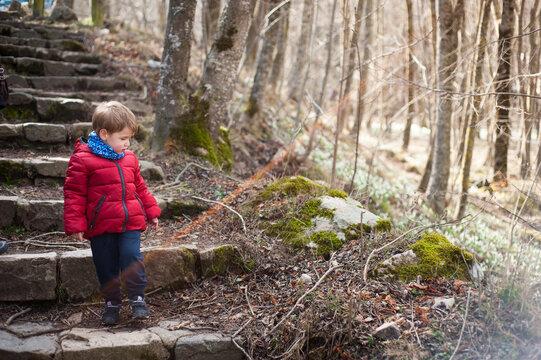 Un niño baja unas escaleras por un bosque hivernal