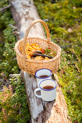 Fototapeta picking season and leisure concept - mushrooms in basket and two cups of tea on log in forest obraz