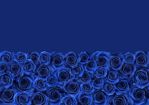 青い薔薇の絨毯、半分カラーの背景アート