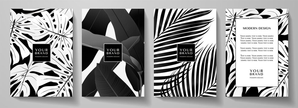 Exotic black and white cover design set. Floral background with tropical pattern of leaf (palm, banana tree). Elegant vector collection for wedding invite, brochure template, restaurant menu