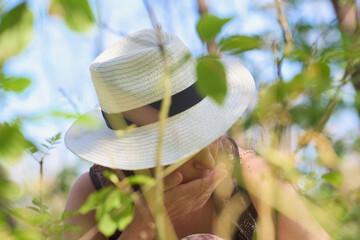 Obraz Tam, gdzie rosną poziomki. Dziewczyna w kapeluszu zajada leśne poziomki, w słoneczny letni dzień.. - fototapety do salonu