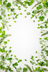 Various fresh herbs arranged in a frame. Cooking concept with spices garden herbs. Healthy food.Top view.