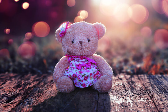 Teddy bear on the wooden floor in the grass in the morning with cute bokeh in winter.