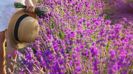 Fototapeta A child in a lavender field. Selective focus. obraz