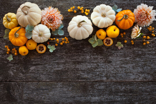 Dark wooden background with white and yellow pumpkins, dahlia flowers, hydrangea. Space for text congratulations for Thanksgiving and Halloween.