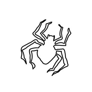 spider. black spider. halloween holiday. black wickedness