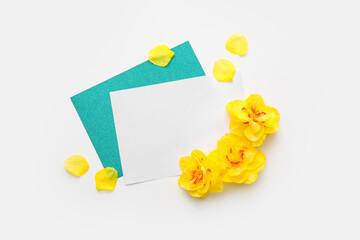 Fototapeta Beautiful daffodils and blank cards on white background obraz