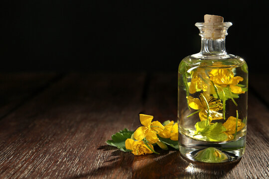 Bottle of celandine tincture and plant on wooden table, space for text