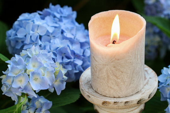 A candle among beautiful blue hortensia flowers in the garden.