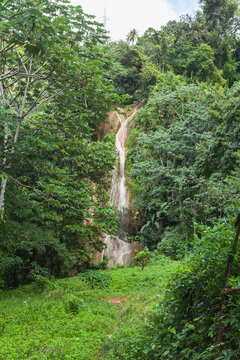 Vertical landscape with waterfall in tropical forest