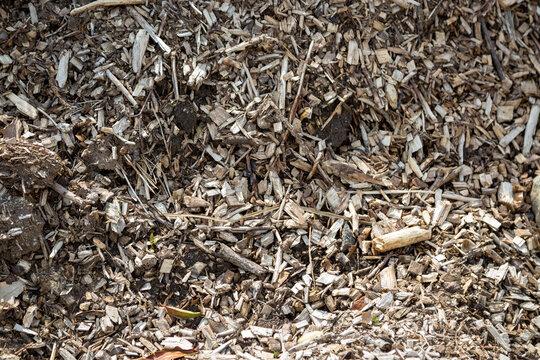 Geschreddertes Holz - Rindenmulch