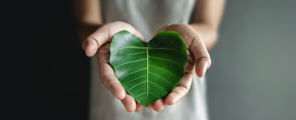 Obraz Green Energy, ESG, Renewable and Sustainable Resources. Environmental and Ecology Care Concept. Close up of Hand holding a Heart Shape Green Leaf - fototapety do salonu