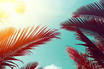 Obraz Tropical palm tree with sun light on sunset sky and cloud abstract background. - fototapety do salonu