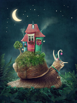 Cute snail with house