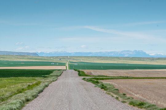 Rolling hills of Montana