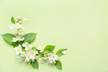 Fototapeta Beautiful jasmine flowers on color background obraz