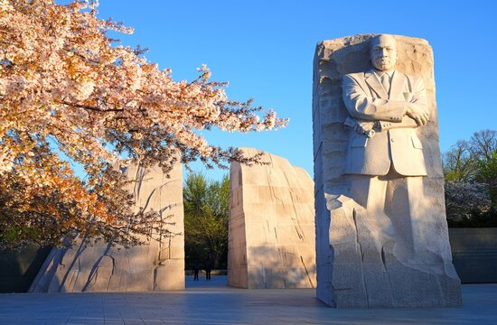 WASHINGTON, DC -2 APR 2021- View of the Martin Luther King Jr. Memorial, a landmark granite stone statue by the Tidal Basin during the cherry blossom season in the nation's capital.