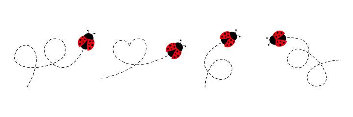 Fototapeta Cute ladybug icon set. Ladybugs flying on dotted route. Cartoon ladybirds with open wings. Vector isolated on white background. obraz