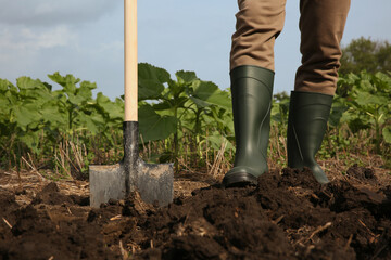Fototapeta Worker digging soil with shovel outdoors, closeup obraz