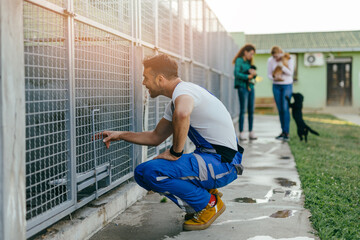 Obraz Young handsome adult male worker in animal shelter holding adorable dogs.. - fototapety do salonu