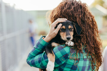 Obraz Young adult woman holding adorable dog in animal shelter. - fototapety do salonu