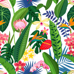 Tropical flower pattern, seamless background. Vector illustration cartoon template for packaging design or wallpaper.
