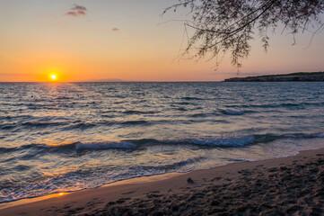Torre Dell'Orso sunrise over the sea on the beach. Salento coast, Apulia. Italy, Puglia. Tree...