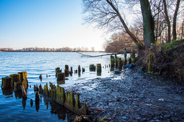 Nad brzegiem jeziora Gopło