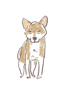 神妙な顔の犬