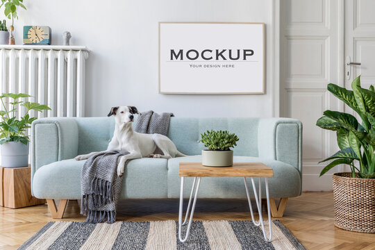 Cozy composition of stylish living room interior with mock up poster frame, sofa, carpet, dog, plants and other accessories. Template..