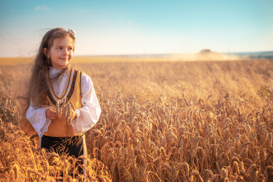 Young girl with traditional Bulgarian folklore costume at the agricultural wheat field during harvest time with industrial combine machine