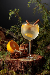 Gin and Tonic cocktail with orange and cinnamon.