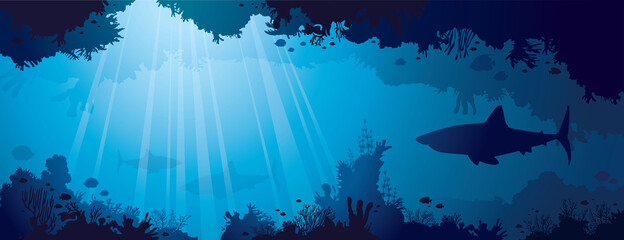 Coral reef, Sharks, fishes and sea.