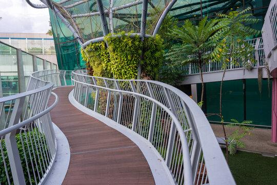 Wooden bridge in Changi forest garden, Singapore