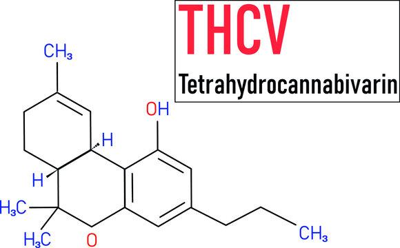THCV molecular formula. Tetrahydrocannabivarin molecule structure on white background.