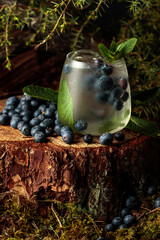 Gin and Tonic cocktail with blueberry and mint.