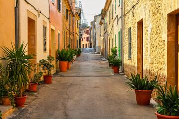 Smalle steeg met omzoomde huizen en groene planten in een dorp op Mallorca.