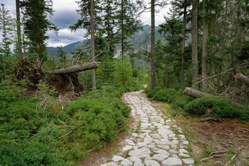 Fototapeta szlak turystyczny w Tatrach obraz