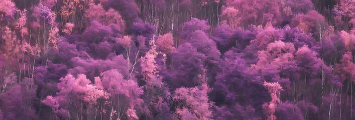Fototapeta pink nature landscape, spring background flowers park outdoors obraz